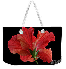 Weekender Tote Bag featuring the photograph Looking Back by Judy Whitton