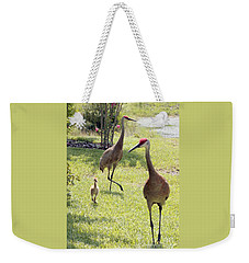 Looking For A Handout Weekender Tote Bag