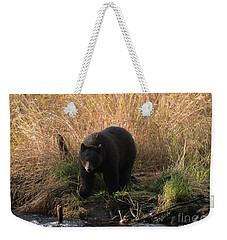 Looking For A Meal Weekender Tote Bag