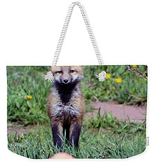 Take Me Home Weekender Tote Bag by Fiona Kennard