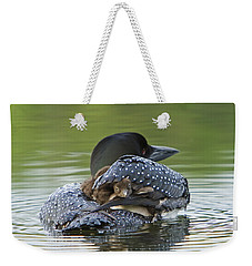 Loon Chick - Peek A Boo Weekender Tote Bag