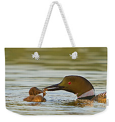 Loon Feeding Chick Weekender Tote Bag