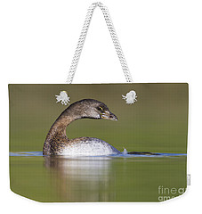 Weekender Tote Bag featuring the photograph Loss-neck Grebe by Bryan Keil