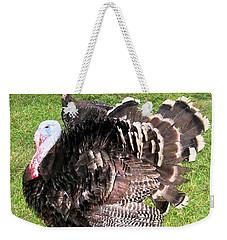 Weekender Tote Bag featuring the photograph Lost City Turkeys by Belinda Lee