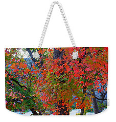 Lost Maples Fall Foliage Weekender Tote Bag