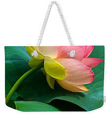 Lotus Blossom And Leaves Weekender Tote Bag by Byron Varvarigos