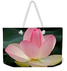 Lotus In Bloom Weekender Tote Bag by Byron Varvarigos