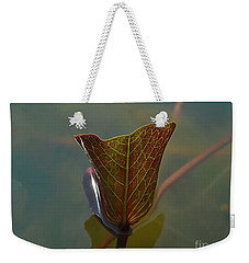 Weekender Tote Bag featuring the photograph Lotus Leaf by Michelle Meenawong