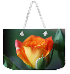 Weekender Tote Bag featuring the photograph Louisiana Orange Rose by Ester  Rogers