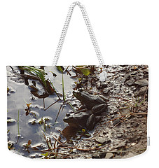 Love Frogs Weekender Tote Bag by Michael Porchik