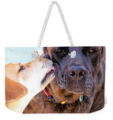 Weekender Tote Bag featuring the photograph Love Licks by Janice Rae Pariza