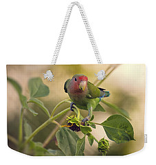Lovebird On  Sunflower Branch  Weekender Tote Bag by Saija  Lehtonen