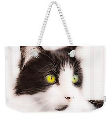 Lovely Little Kitten Weekender Tote Bag by Naomi Burgess