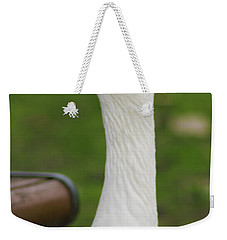 Weekender Tote Bag featuring the photograph Lucy Goose 2  by Naomi Burgess