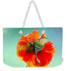 Luna Moth On Poppy Aqua Back Ground Weekender Tote Bag