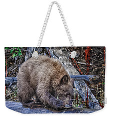 Weekender Tote Bag featuring the photograph Lunch Break by Jim Thompson