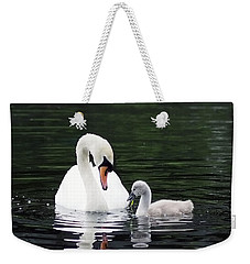Lunchtime For Swan And Cygnet Weekender Tote Bag by Rona Black