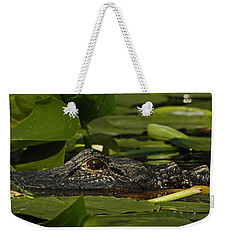 Weekender Tote Bag featuring the photograph Lying In Wait by Vivian Christopher
