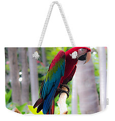 Weekender Tote Bag featuring the photograph Macaw by Angela DeFrias