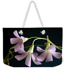 Macro Clover Weekender Tote Bag by Greg Allore
