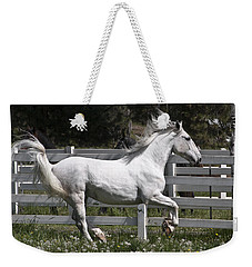 Weekender Tote Bag featuring the photograph Maestoso Aurorra D3990 by Wes and Dotty Weber
