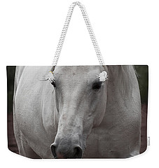 Weekender Tote Bag featuring the photograph Maestoso II Ambrosia D5881 by Wes and Dotty Weber