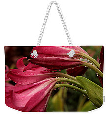 Magenta Rain Weekender Tote Bag by Greg Allore