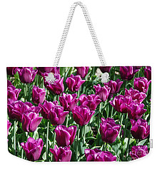 Weekender Tote Bag featuring the photograph Magenta Tulips by Allen Beatty