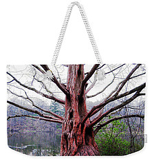 Weekender Tote Bag featuring the photograph Magic Tree by Nina Silver