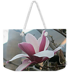 Weekender Tote Bag featuring the photograph Magnificent Magnolia Blossom by Leanne Seymour