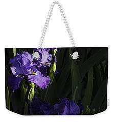 Majestic Spotlight Weekender Tote Bag