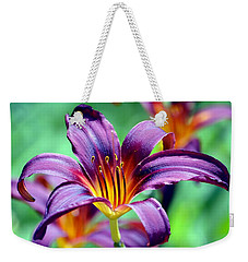 Weekender Tote Bag featuring the photograph Majesty by Deena Stoddard