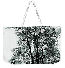 Weekender Tote Bag featuring the photograph Majesty by Lauren Radke