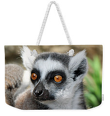 Weekender Tote Bag featuring the photograph Malagasy Lemur by Sergey Lukashin