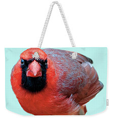Male Cardinal Portrait Weekender Tote Bag