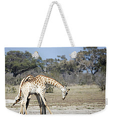 Weekender Tote Bag featuring the photograph Male Giraffes Necking by Liz Leyden