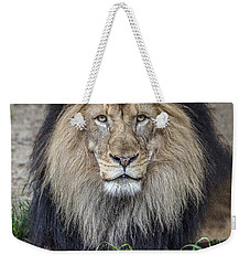 Male Lion Portrait Weekender Tote Bag