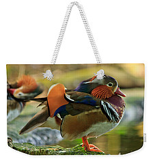 Weekender Tote Bag featuring the photograph Male Mandarin Duck On A Rock by Eti Reid