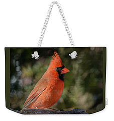 Male Northern Cardinal 3 Weekender Tote Bag