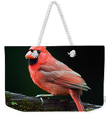 Male Northern Cardinal Cardinalis Weekender Tote Bag