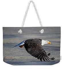 Male Wild Bald Eagle Ready To Land Weekender Tote Bag by Eti Reid