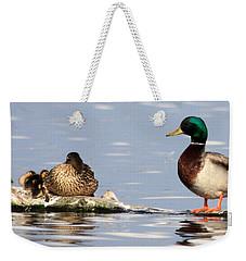 Mallard Family Weekender Tote Bag