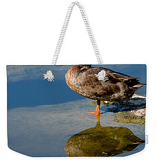 Mallard Reflection Weekender Tote Bag