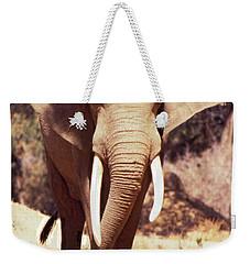 Mana Pools Elephant Weekender Tote Bag
