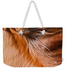 Mane Dance Light Weekender Tote Bag by Michelle Twohig