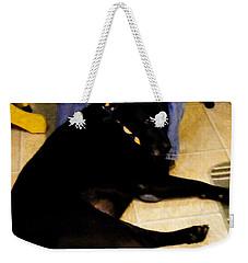 Man's Best Friend Weekender Tote Bag by Barbara Griffin