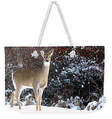 March Snow And A Doe Weekender Tote Bag