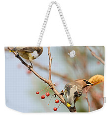 Weekender Tote Bag featuring the photograph Masked Duo by Kerri Farley