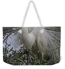 Mating Plumage Weekender Tote Bag by Deborah Benoit