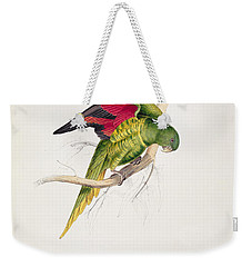 Matons Parakeet Weekender Tote Bag by Edward Lear